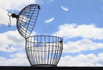 birdandcage